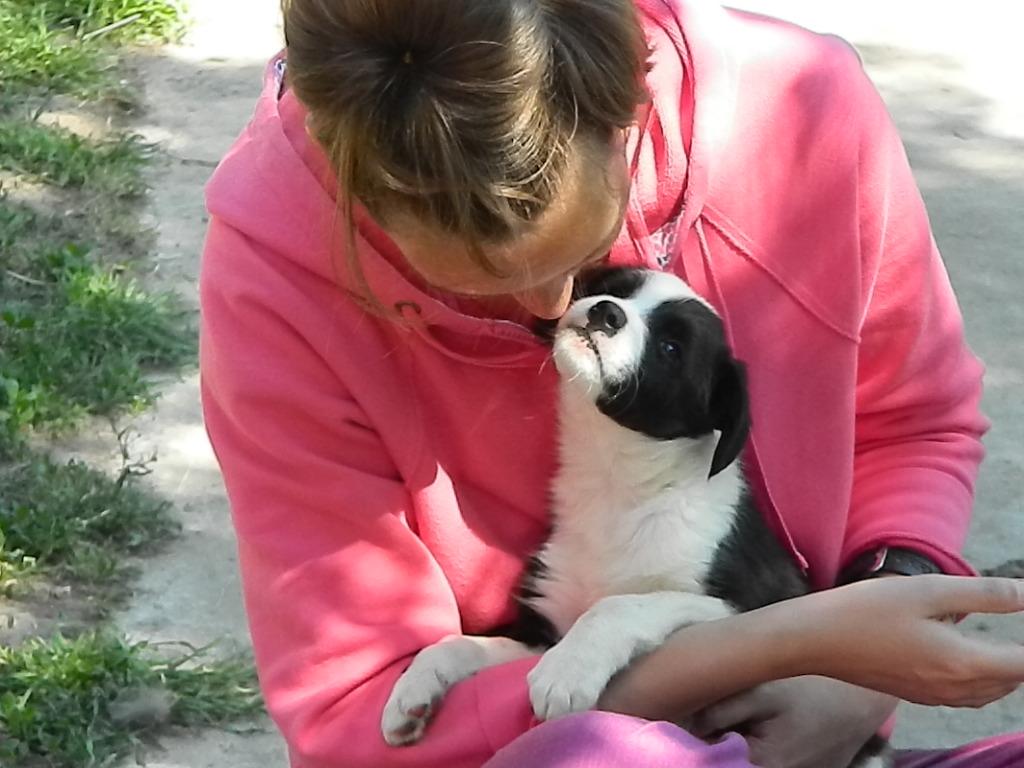 Dana et Berit, un petit chien sauve