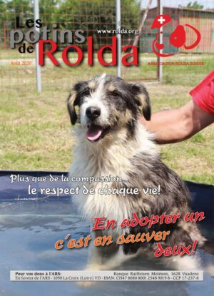 Rolda-Journal-Aout-2020-1