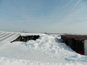 Grand refuge - hiver 2014